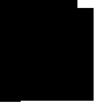 icona zucchina Secco